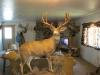 Randall-Wyoming-007