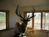 Randall-Wyoming-015