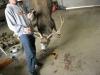 Randall-Wyoming-074